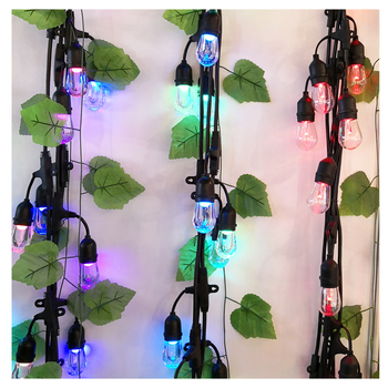 Outdoor waterproof RGB changing color horse race led string lights include remote control and bulbs