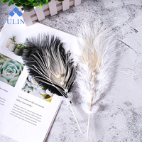 New Style Birthday Party Cake Decoration Plug-In Feather Cake Flag Decoration