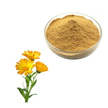 Organico <span class=keywords><strong>Estratto</strong></span> <span class=keywords><strong>di</strong></span> Fiori <span class=keywords><strong>di</strong></span> <span class=keywords><strong>Calendula</strong></span> Officinalis Polvere per Ingredienti Cosmetici