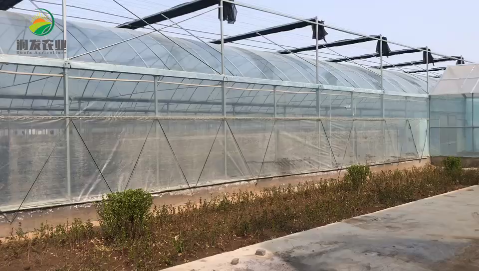 Hot sale tunnel ventilation fan modern agricultural equipments hydroponic agricultural greenhouse