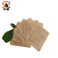 Shaolin Temple Chinese Traditional OEM Magnetic Medicated Natural Herbal Pain Relief Patch Gel Plaster