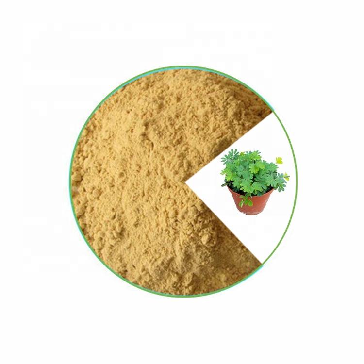 Ekstrak Serbuk Akar Kulit Mimosa Homenlis 10:1 Murni/Ekstrak Mimosa Hosdilis