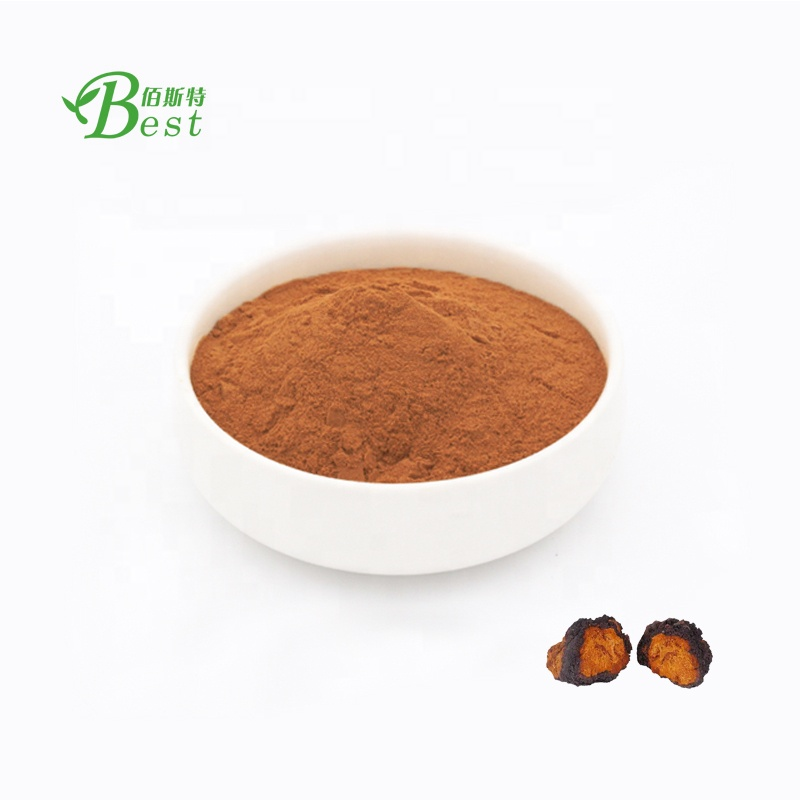 Factory price chaga extract <strong>powder</strong>/organic extract chaga mushroom 10:1