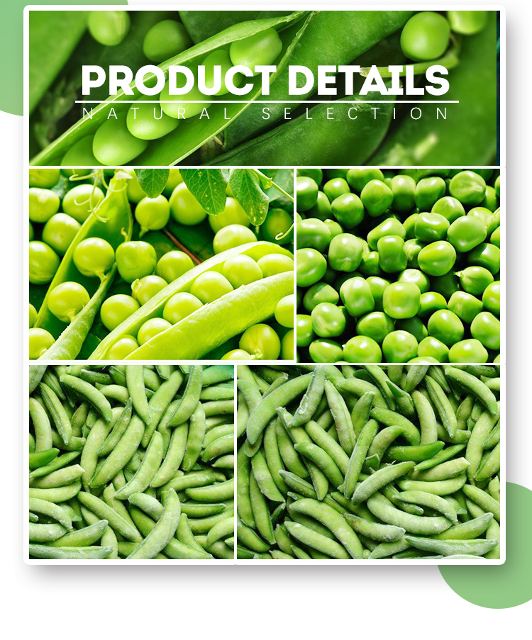 Natural vegetable bulk frozen green peas