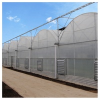 Low cost agricultural multi-span arch type PO film greenhouse with vertical hydroponics growing system