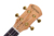 Wholesale professional solid spruce A top high gloss 26inch ukulele