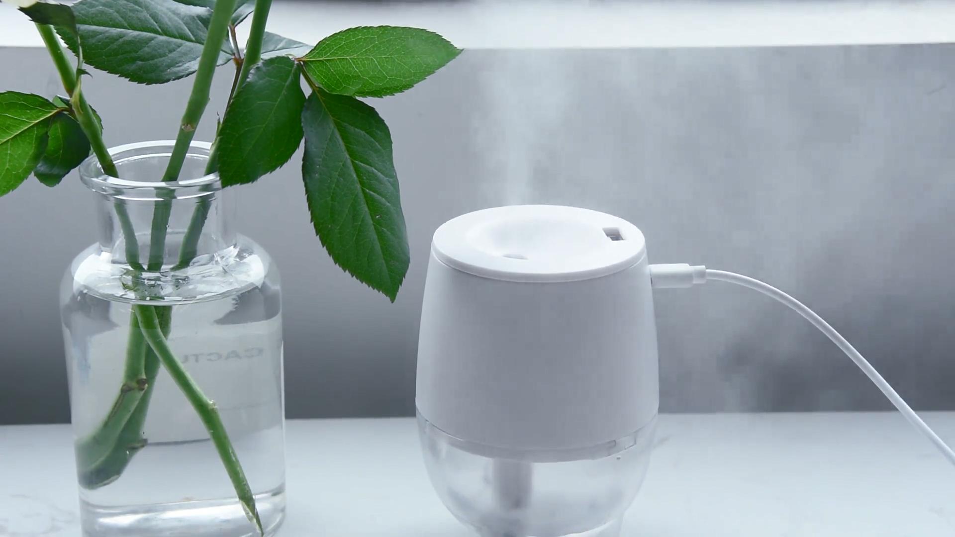 Humidifier चार्ज आउटडोर humidifier पोर्टेबल मिनी धुंध humidifier