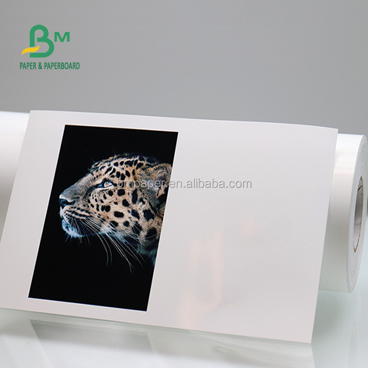 240gsm 260gsm Waterproof RC Inkjet Photo Paper For Canon Instant Drying