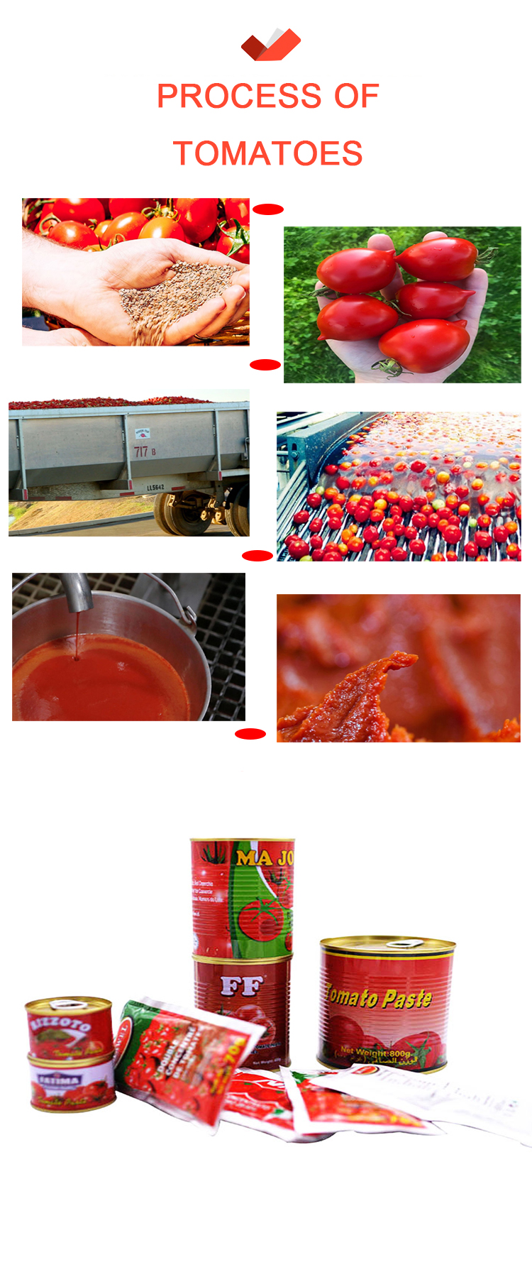 High quality organic cooking food seasoning tomato paste with good taste