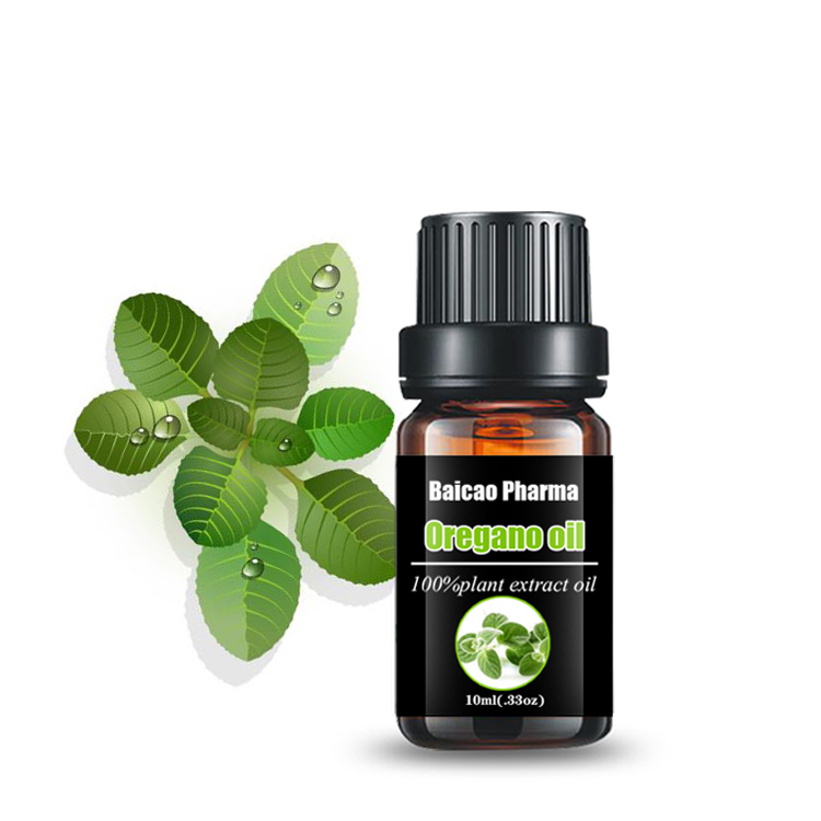 Chinese factory wholesale buy pure and natural oregano oil of essential oil with carvacrol 95%