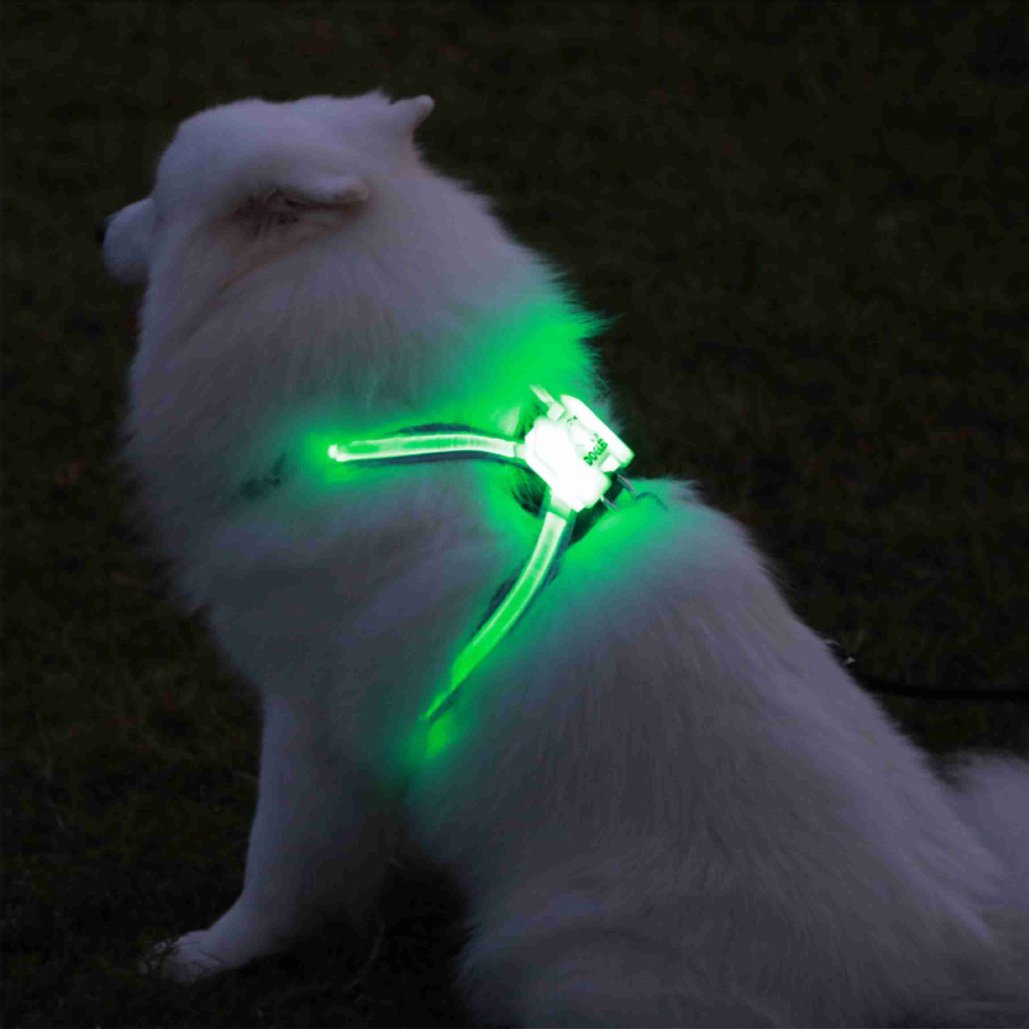 cc simon dog harness vest led dog collar flashing dog harness led light up collar USB rechargeable