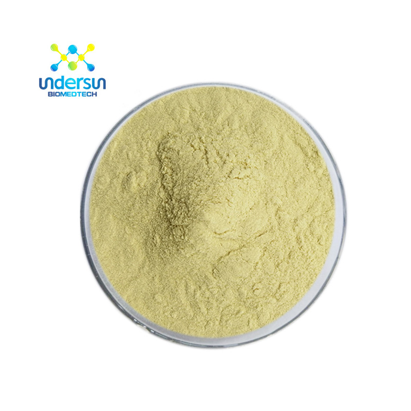 Ginger extract manufacturer supply good price red black white fresh dried dry pure organic ginger root extract gingerol <strong>powder</strong>