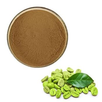 Pure Green Coffee Bean Extract 20:1 Chlorogenic Acid