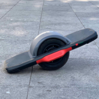 Unicool 2020 new 10 inch 500w cheap smart one wheel hoverboard