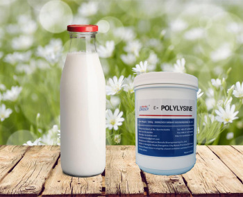 Natural peptide preservatives e polylysine for Lactose/ sugar of milk