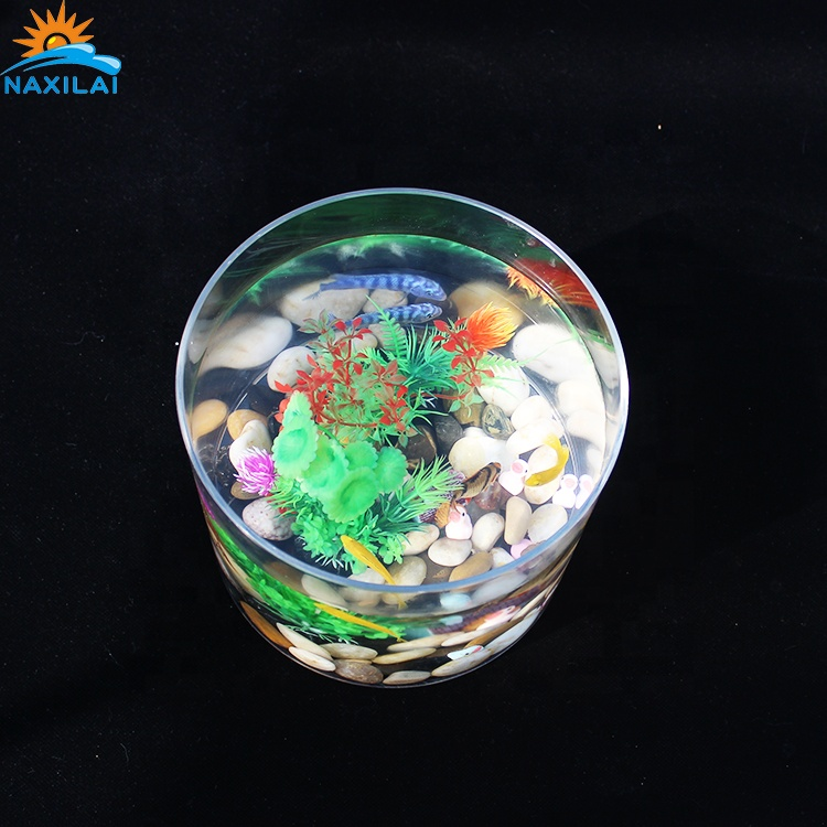 NAXIALI Elegant <strong>Fish</strong> For Aquarium Table With <strong>Fish</strong> Aquarium Round Acrylic Aquarium Tank High Quality Goods