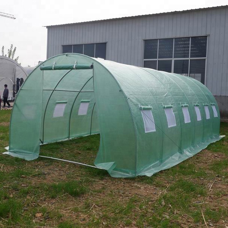 SS-8132 China Supplier Agricultural greenhouses