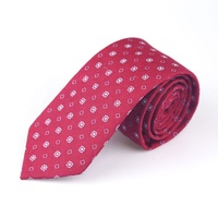 Hot sale exquisite novelty fashion custom necktie neck tie