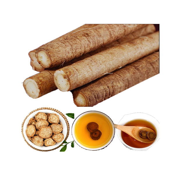 Tonifying the kidney great burdock root chips organic extract arctiin tea for blood pressure vitamin immune system - 4uTea | 4uTea.com
