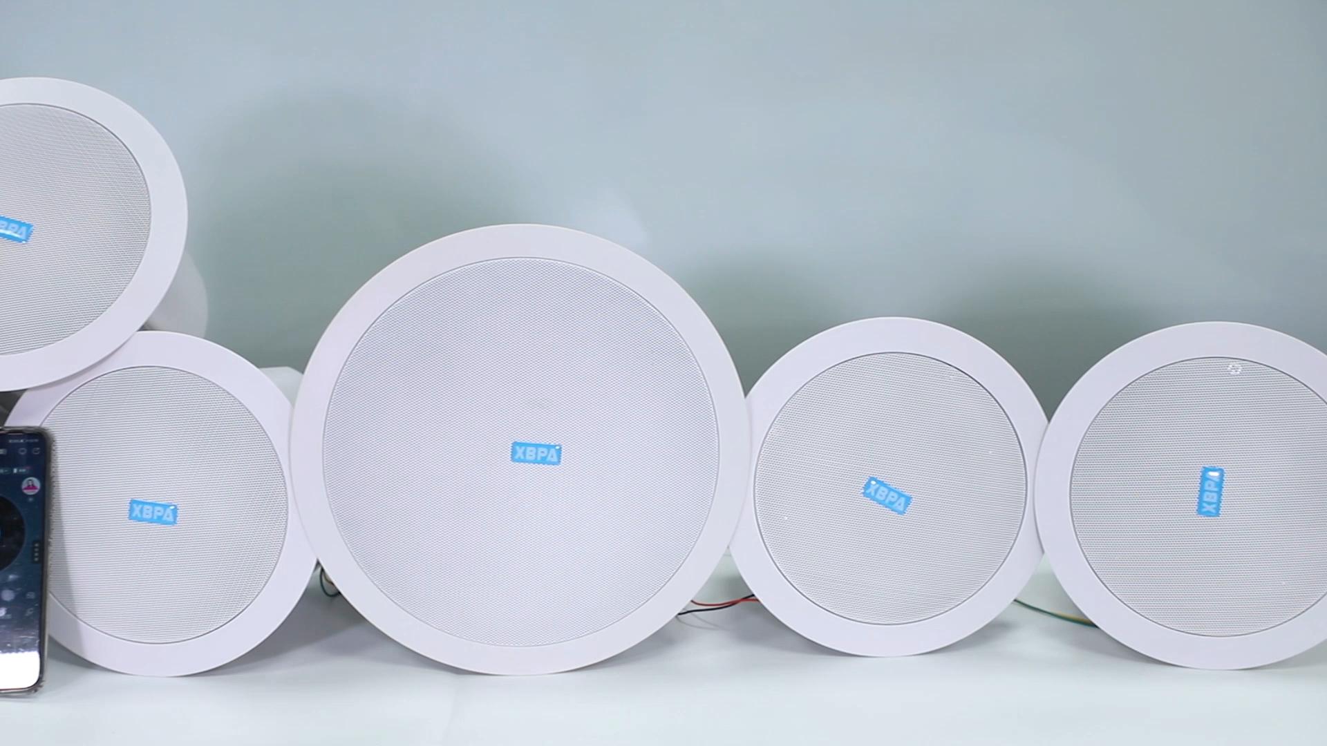 Hệ Thống Rạp Hát Gia Đình Bluetooth Không Dây Wi-Fi Chất Lượng Cao. Lắp Đặt Trần Ẩn Với Bộ Khuếch Đại Công Suất Tích Hợp 50W * 1 + 20