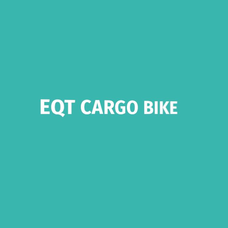 EQT Sepeda Kargo Elektrik, Sepeda Kargo 3 Roda untuk Penjualan Hadiah Natal