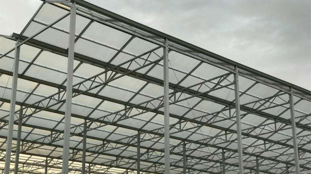 Domates dikey çerçeve topraksız dikim polikarbonat çatı levhası sera