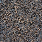 Single Herbs & Spices Product Type and Raw Processing Type Dried clove whole/ clove water extract/ clove spice with high quality