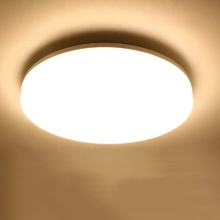 24W LED Ceiling Light for Bathroom, Bedroom, Kitchen, Hallway