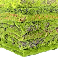 New design all season preserved greenery moss vertical garden artificial moss carpet for wall decoration