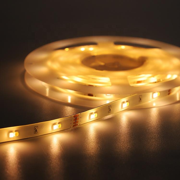Waterproof Infrared Remote Control LED Strip Light Powered DC12V SMD3528 led lights