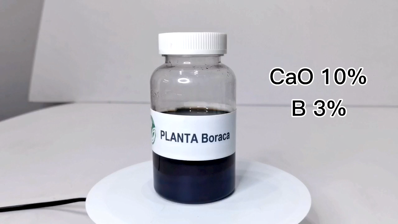Soluble fertilizer PLANTA Boraca plants need calcium fertilizer