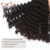 Remy indian human virgin hair unprocessed price,spring curl human hair curly weave