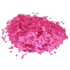 Christmas Decoration Wholesale Polyester Powder Neon glitter for Crafts