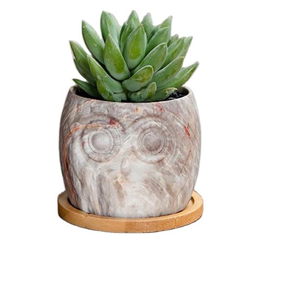 12 Pcs Owl Shape Ceramic Pots For Succulent Plants For Desk