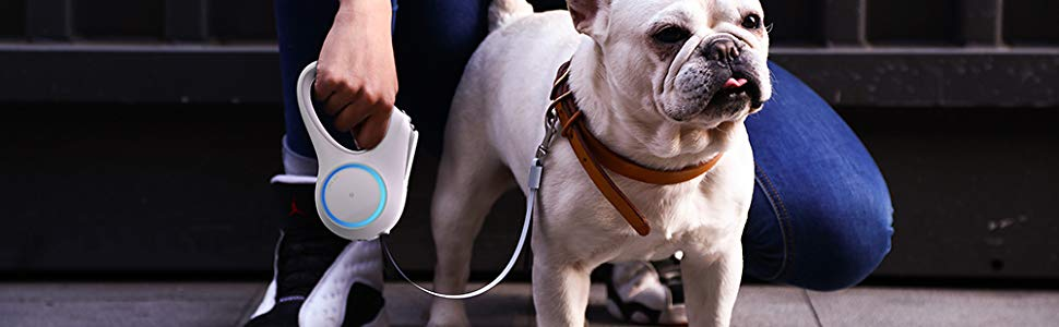 PETKIT Go Shine New Retractable Dog Leash with 2 Streamer Rings, Headlamp Spotlight, Magnetic Contact Charging