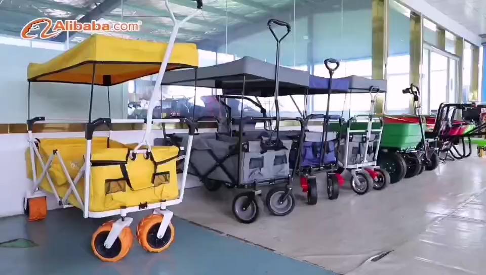 EWB700 carrinho de mão elétrico motor de 500W ou 700W rodas carros jardim CE/SGS/SAMTA/BSCI/ china fábrica