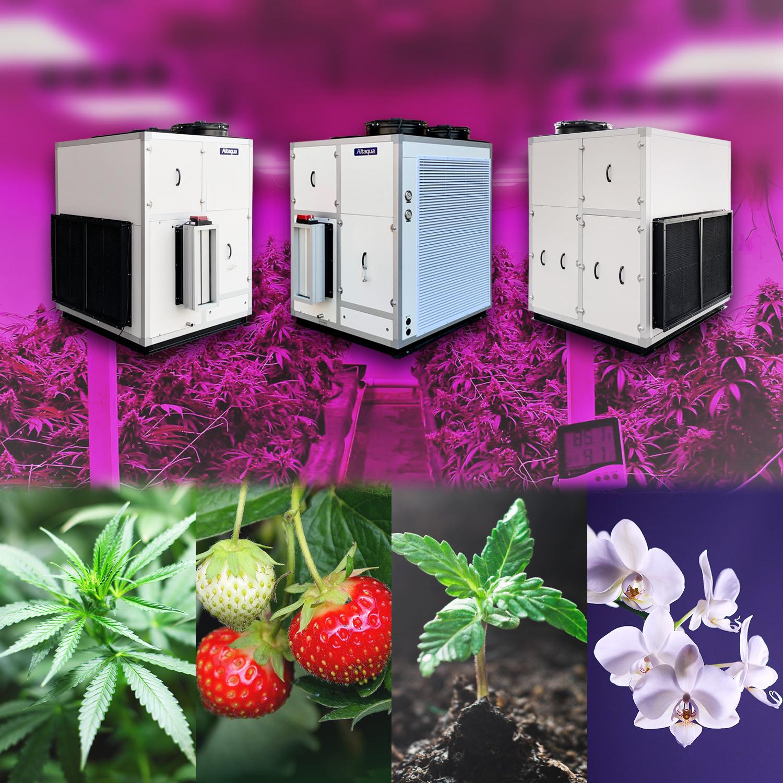 No Moq greenhouse commercial air dehumidifier