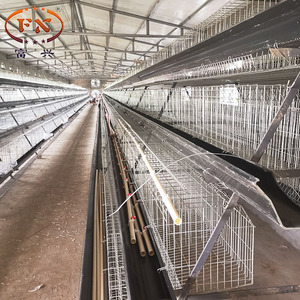 chicken egg lay cage and 3 tier 120 capac chicken layer cage for poultri in dubai