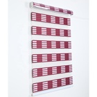 "High Quality with Fashion Style of Rainbow Roller Zebra Blinds/Shade Customized window shade 20""W x 48""L"