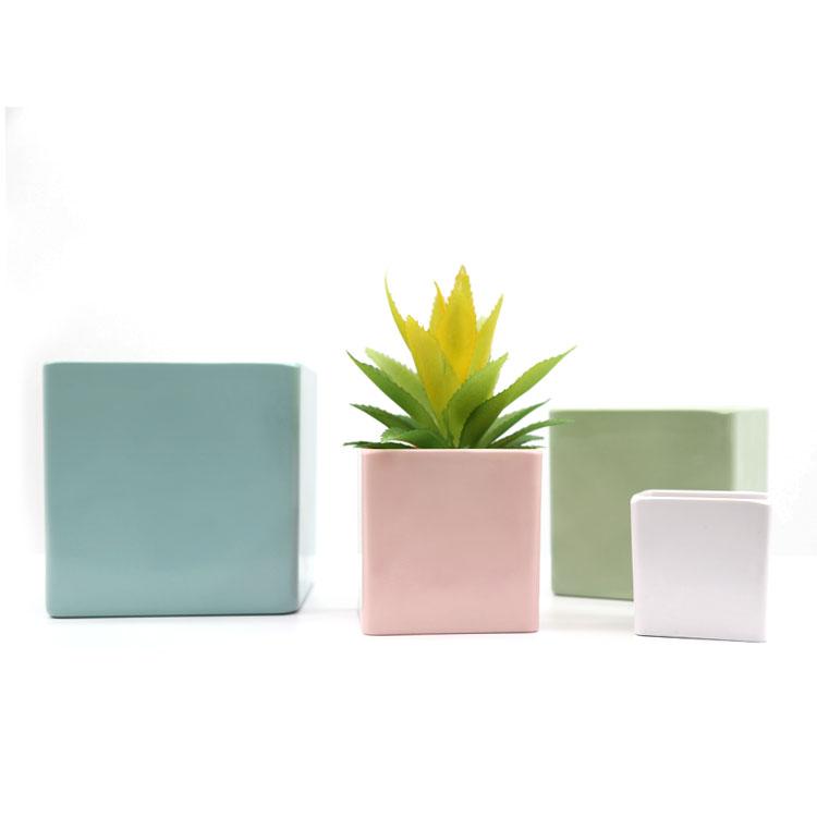 Square columns design succulents small flower pot indoor