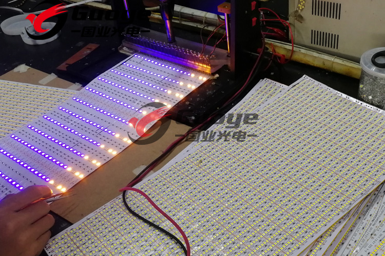 Shenzhen factory 3528 led strip with non waterproof IP30 12v 24v for Indoor residential lighting