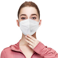 Personalized Custom Safety disposable KN95 Anti Air Particulate Respirator Dust face Mask