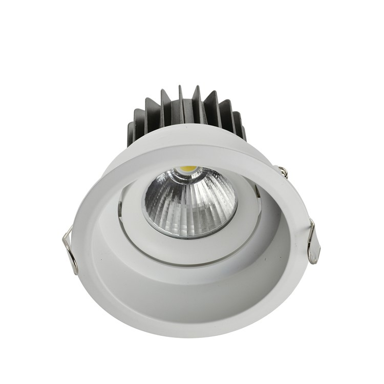 Aluminum  10W recessed led spot ceiling downlight  double triple  ring cob light 12W 20W 30W  hotel shop spotlight