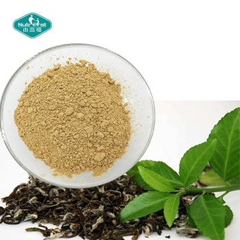 Natural Caffeine Powder Green Tea Extract Powder Natural Caffeine 98%