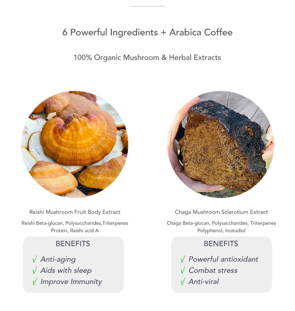 Wholesale Enhance Immunity Reishi 7 in 1 Instant Coffee