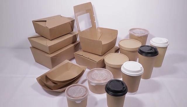Cina sekali pakai takeaway supplier kertas biodegradable pulp plastik kemasan makanan