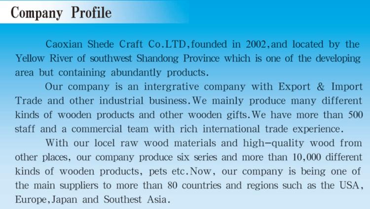 company profile.jpg