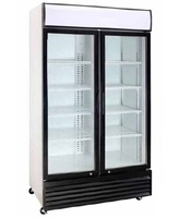 Commercial Refrigeration Catering Equipment Meat Beef Drying Aged Display Refrigerator