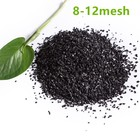 Granular Coconut Shell Activated Carbon Price For Water Treatment