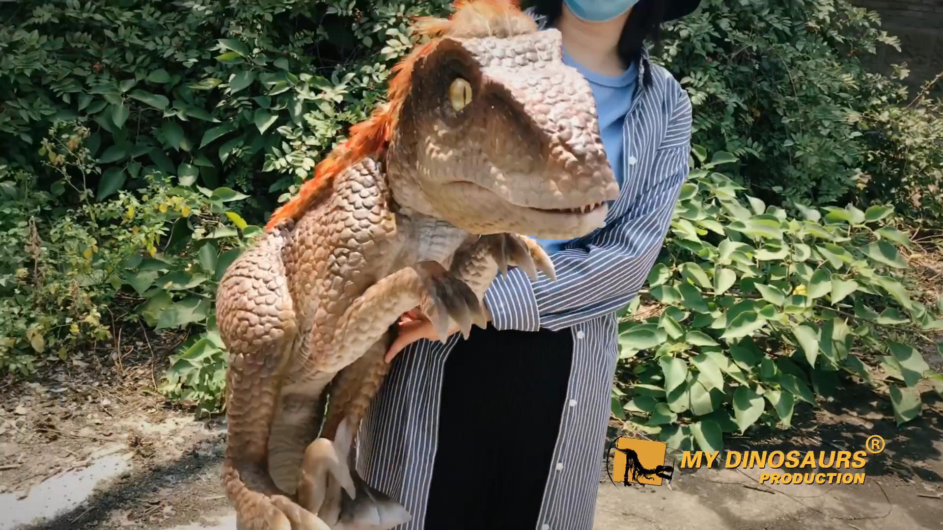 Benim Dino HP016 dinozor Prop gerçekçi dinozor bebek kukla